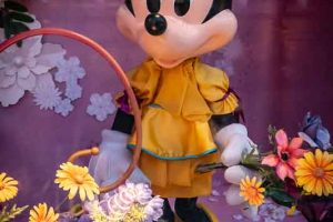 Disneyland 2018 176